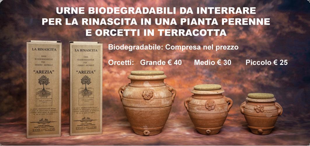 URNE BIODEGRADABILI DA INTERRARE PER LA RINASCITA IN UNA PIANTA PERENNE E ORCETTI IN TERRACOTTA biodegradabile: compresa nel prezzo orectti: piccolo €25 medio €30 grande €40